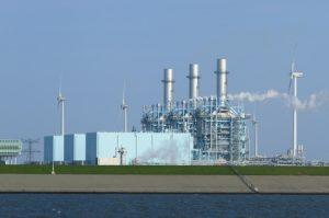 Multi fuel power plant