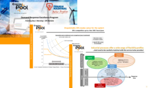 Energy Pool study on flexibility demand response in regulated markets